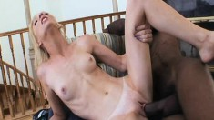 Skinny Alexa Lynn is almost split in half by his monster black wanker