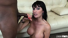 She poses and fingers, then a black cock shows up for her to suck