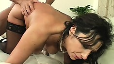 Curvaceous brunette milf tongues her man's ass before wildly fucking his long cock